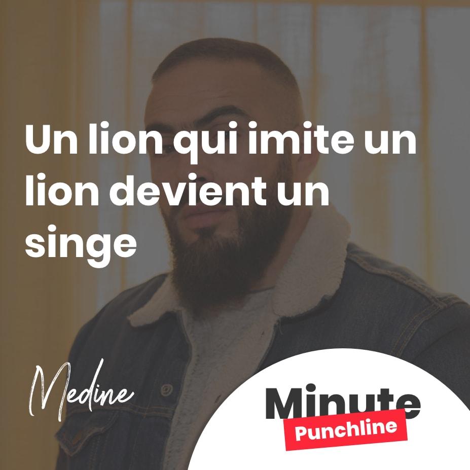 Un lion qui imite un lion devient un singe